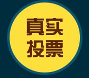 深圳微投电子